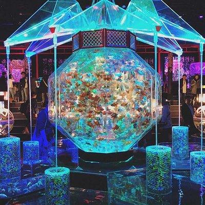 展場中間的大型魚缸
