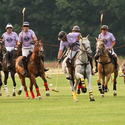 World Class Polo celebrates 120 years at Saratoga Polo Association at YOUR Saratoga Summer!