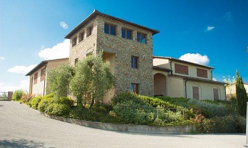 azienda agricola Casa di Monte - Cantina -  Agriturismo - Wine Tasting