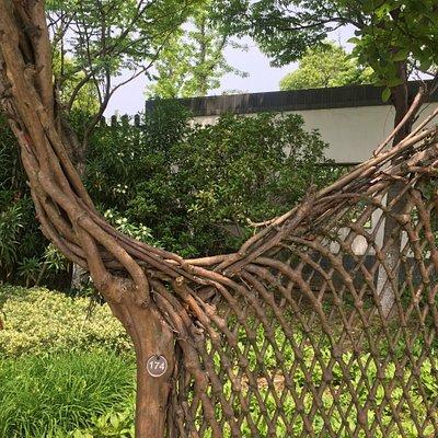DYS Botanical Garden