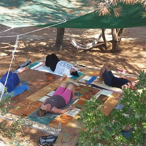 Yoga inside the forest