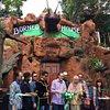 Borneo A