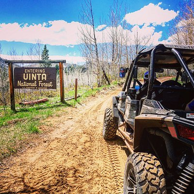 Beautiful Day on a RZR 4