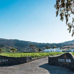 Estate Argyros winery