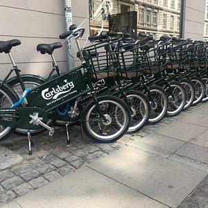 Best Rental bikes in Copenhagen? Probably. We serve a cool complementary Carlsberg refreshment t