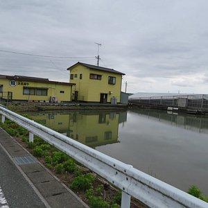 養鰻池とお店
