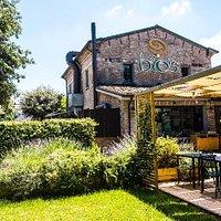 Bio's Kitchen Rimini