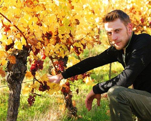 Portrait d'automne