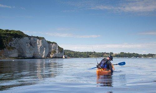 old harry rocks kayaking trips