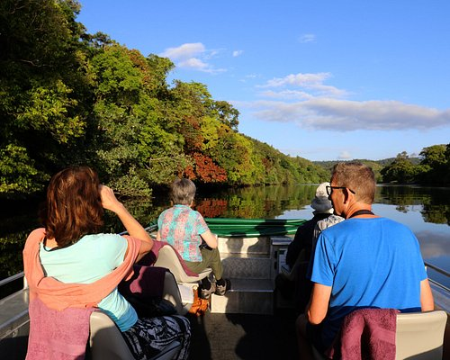 Exploring the Daintree Rainforest from the Daintree River
