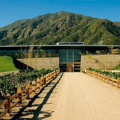 Entrada Principal Bodega Viña Montes Apalta