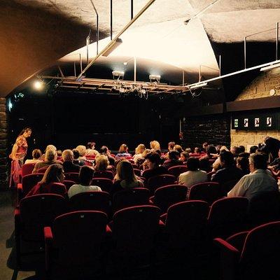 Théâtre Le Guignol de Lyon