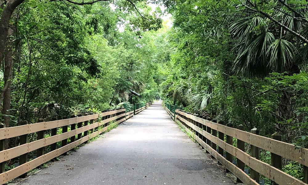 The Gee Creek Bridge in Winter Springs, one of many tree-lined sections of the trail.