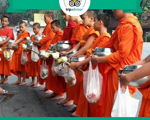Morning Buddhists Culture tour.  Alms to monks.