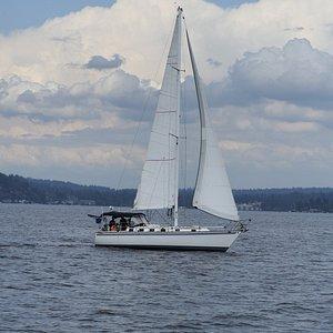 Sailing in Lake Washington!