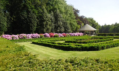 Bij Jachtslot Sint Hubertus, prachtige rhododendrons
