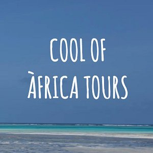Cool of Africa Tours