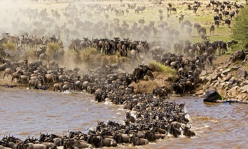 Crossing point for the Wild beast migration from the Serengeti plains into the great Mara reserv
