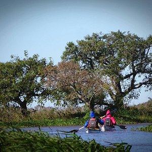 Explorá en kayak los rincones escondidos del río Paraná