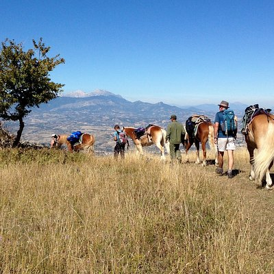 Walking with ponies on a Sacred Walks tour in the Majella National Park, Abruzzo, central Italy.