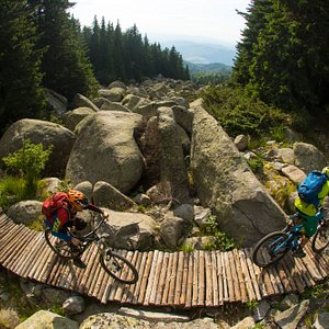 """The stone rivers in Vitosha, also called """"Moranes"""" are a very special landmark you don't see oft"""