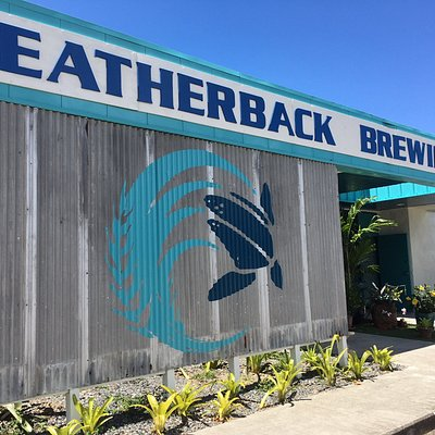 Welcome to Leatherback!
