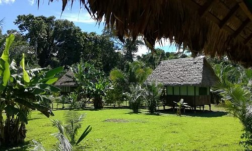 Peru Amazon Garden Tours