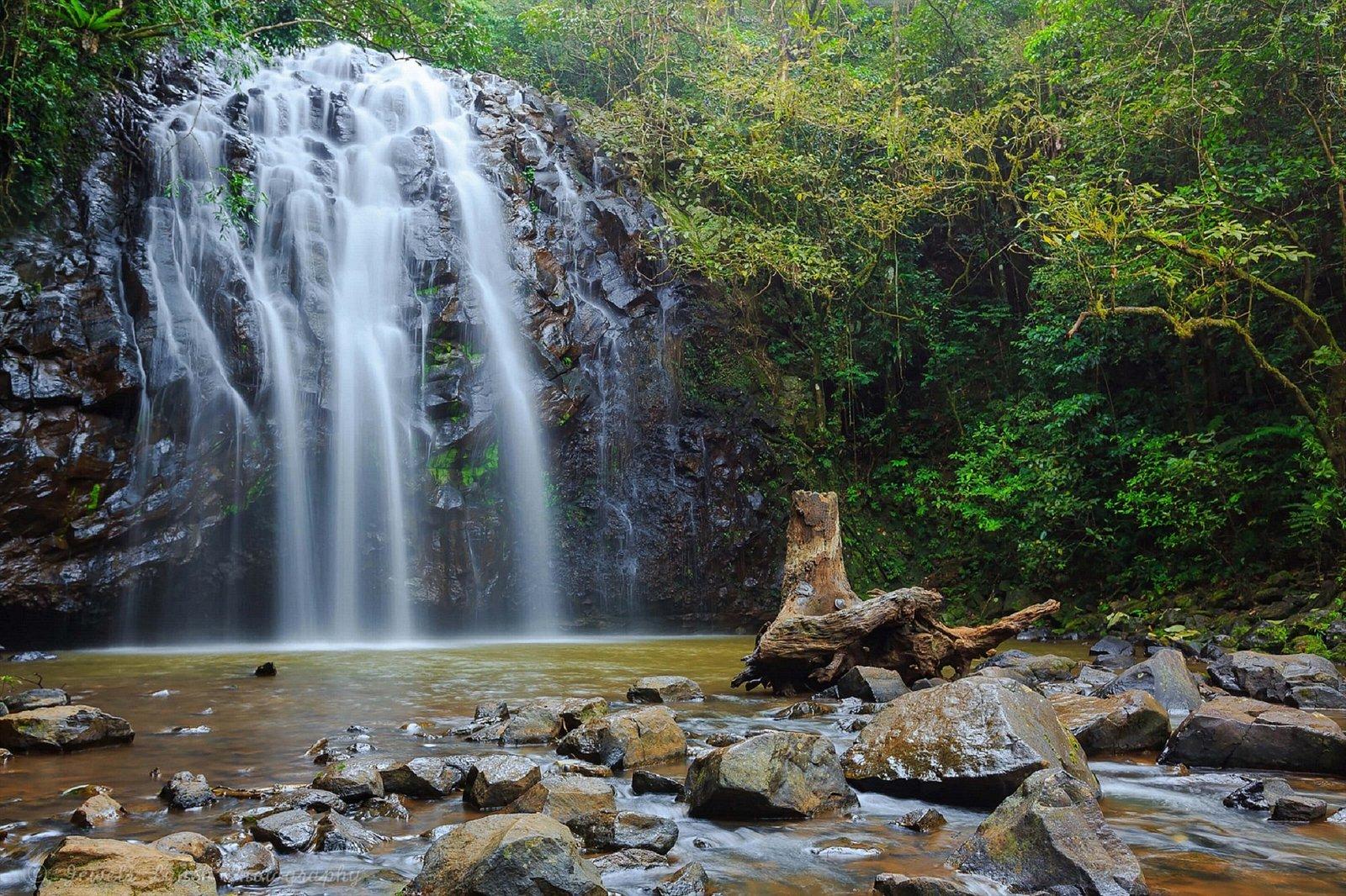Elinjaa Falls, Millaa Millaa, Atherton Tablelands
