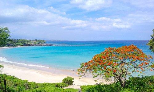 Mauna Kea beach on Hawai'i Island