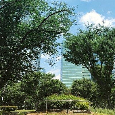 Serene park