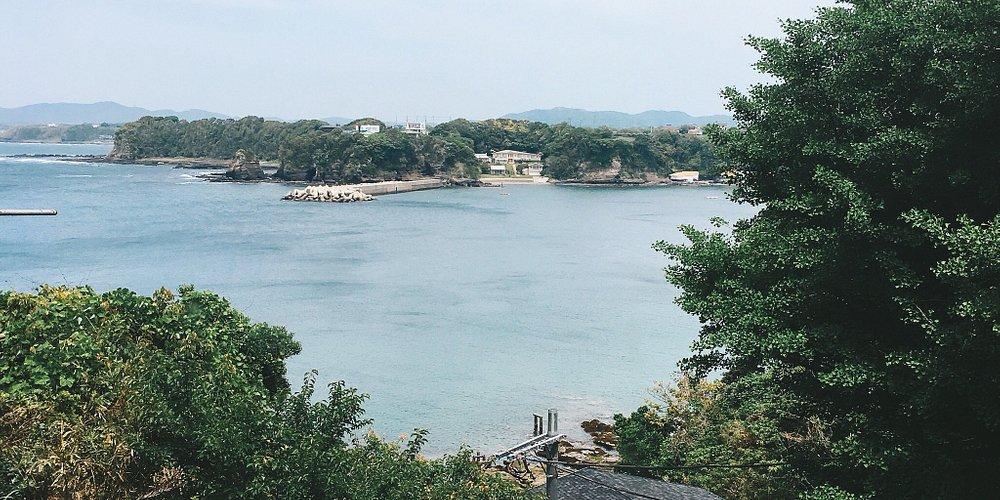 三浦海岸のお魚料理が最高!