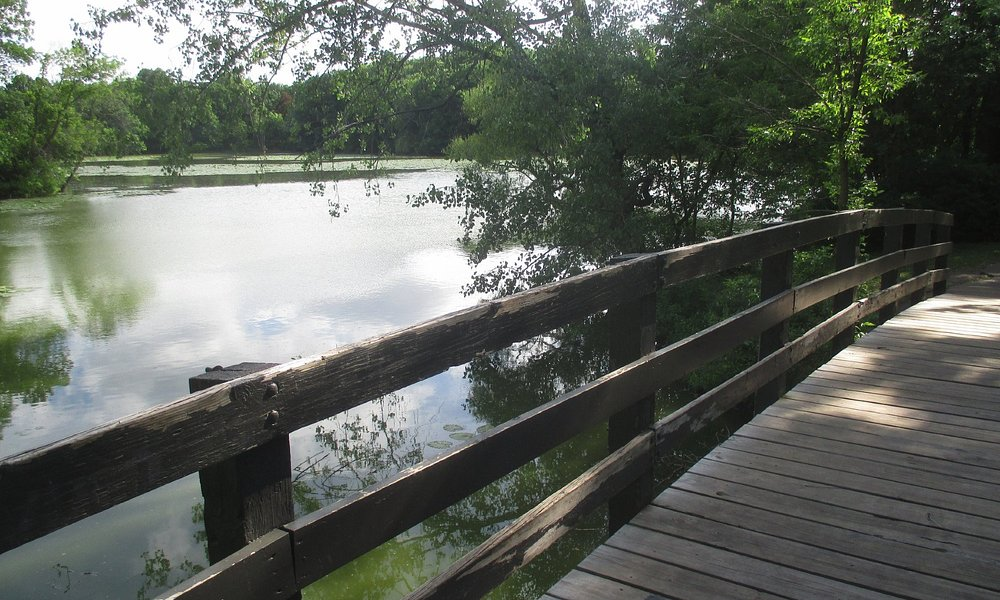 Bridges with view