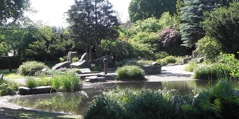 Wadköping: Park