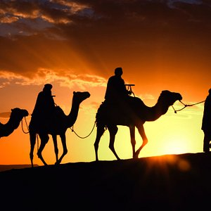 Sunset and camel riding in desert