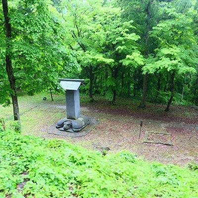 上から見た碑石と亀形の台座。