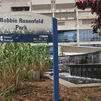 Bobbie Rosenfeld Park: Cascada de Agua- Toronto, Canadà 207.