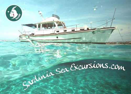 Get on board the Namid to discover the gems of the Mediterranean sea, the islands of La Maddalen