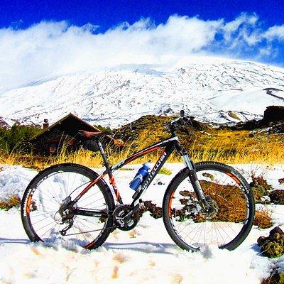 Sicily Bike Tourist Service S.R.L.S.