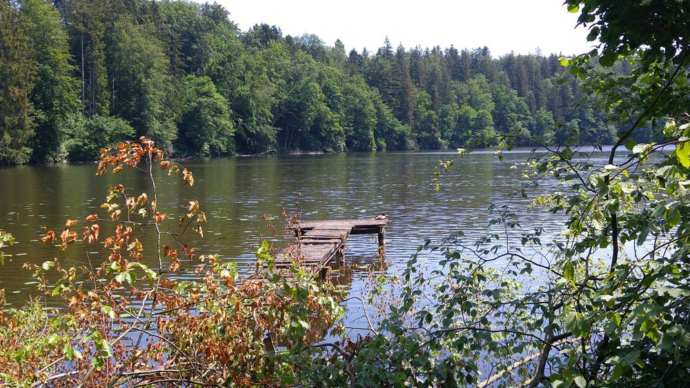 Hackensee - a lake in the near from Holzkirchen