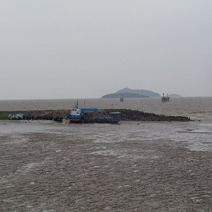 The harbour at low tide is very muddy