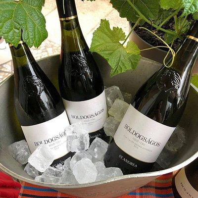 Boldogságos, Weißwein aus Ungarn in der Noble Rot Weinbar