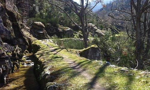 Hiking-wandelen-caminhar-