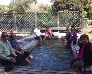 Foot Bath @ Kuirau Park Rotorua