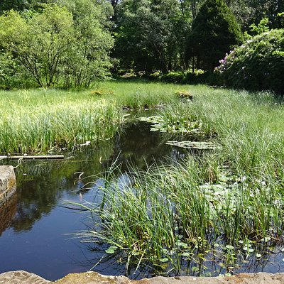 The Drowning Pond - an ancient baronial court name