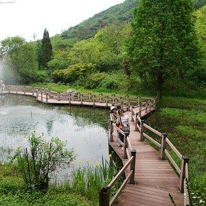 고운식물원