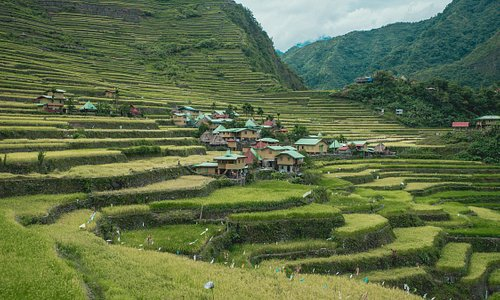 The local village where we stayed at, located in the middle of the rice terraces