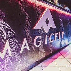 Il logo rinnovato del Magic Fly