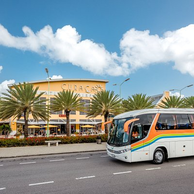 TMC offers shared and private transfer services