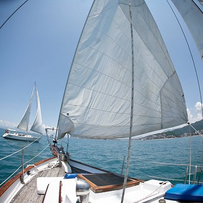 Sailing in the Bay of Banderas is a unique experience, enjoy it with us in PV Sail