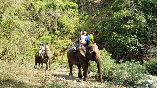 Elephant Camp and Riding Trip in Ngapali.